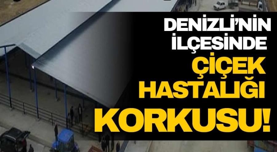 DENİZLİ'NİN İLÇESİNDE ÇİÇEK HASTALIĞI  KORKUSU! - OBJEKTİF DENİZLİ HABER