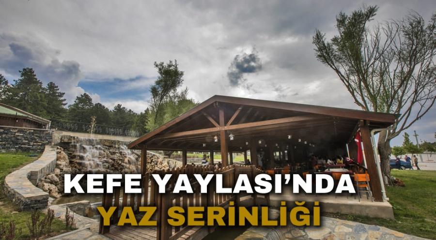 KEFE YAYLASI'NDA YAZ SERİNLİĞİ