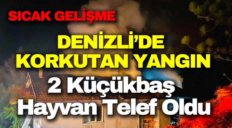 DENİZLİ'DE KORKUTAN YANGIN - OBJEKTİF DENİZLİ HABER